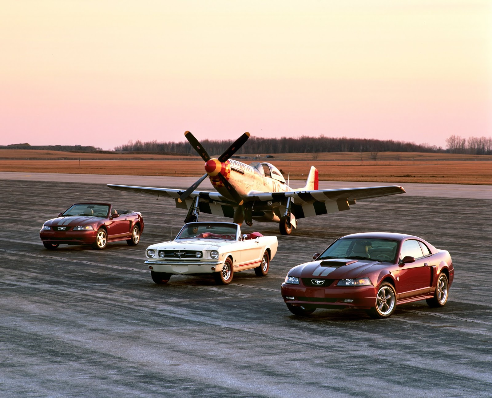 2004 Ford Mustang Anniversary edition and 1965 Mustang with P 51 1 Πώς γιορτάζει η Mustang τα 55 της χρόνια;